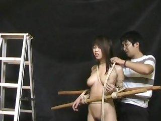 classic chinese bondage 3