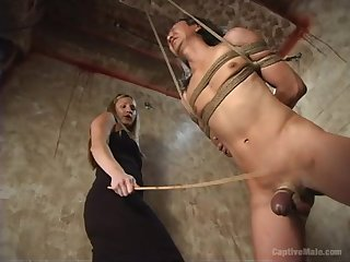 Pretty mart Harmony gives a blowjob to a clothes-horse during the BDSM
